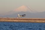 airdrugさんが、羽田空港で撮影したスターフライヤー A320-214の航空フォト(写真)