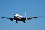 saoya_saodakeさんが、成田国際空港で撮影した全日空 777-281/ERの航空フォト(写真)