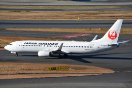 SKY☆101さんが、羽田空港で撮影した日本航空 737-846の航空フォト(写真)