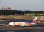 よんすけさんが、成田国際空港で撮影した香港エクスプレス A320-232の航空フォト(写真)