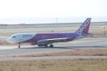 職業旅人さんが、関西国際空港で撮影したピーチ A320-214の航空フォト(写真)