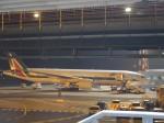 山麓さんが、レオナルド・ダ・ヴィンチ国際空港で撮影したアリタリア航空 777-243/ERの航空フォト(写真)