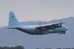 Semirapidさんが、福岡空港で撮影した航空自衛隊 C-130H Herculesの航空フォト(写真)