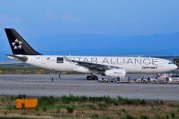 orbis001さんが、関西国際空港で撮影したエジプト航空 A330-243の航空フォト(写真)