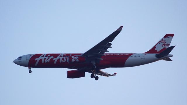 タイ・エアアジア・エックス Airbus A330-300 HS-XTA 成田国際空港  航空フォト   by captain_uzさん