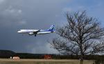 ひげじいさんが、庄内空港で撮影した全日空 A320-211の航空フォト(写真)
