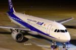 けーし135Rさんが、小松空港で撮影した全日空 A320-211の航空フォト(写真)