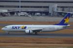 ハンバーグ師匠さんが、羽田空港で撮影したスカイマーク 737-8HXの航空フォト(写真)