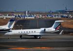 チャーリーマイクさんが、羽田空港で撮影したアメリカ企業所有 G-V Gulfstream V-SPの航空フォト(写真)