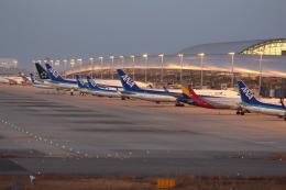 Koenig117さんが、関西国際空港で撮影したアシアナ航空 A321-231の航空フォト(写真)