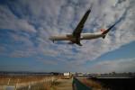 tokotokoさんが、伊丹空港で撮影した日本航空 737-846の航空フォト(写真)