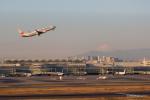 みなかもさんが、羽田空港で撮影した日本航空 737-846の航空フォト(写真)