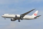 B747‐400さんが、成田国際空港で撮影した日本航空 787-846の航空フォト(写真)