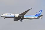 B747‐400さんが、成田国際空港で撮影した全日空 787-881の航空フォト(写真)