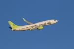 airdrugさんが、羽田空港で撮影したソラシド エア 737-81Dの航空フォト(写真)