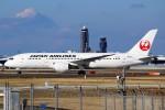 ばっきーさんが、成田国際空港で撮影した日本航空 787-846の航空フォト(写真)