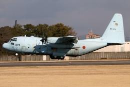 RJFT Spotterさんが、名古屋飛行場で撮影した航空自衛隊 C-130H Herculesの航空フォト(写真)