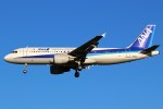 ばっきーさんが、成田国際空港で撮影した全日空 A320-211の航空フォト(写真)