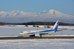 ktaroさんが、旭川空港で撮影した全日空 737-781の航空フォト(写真)