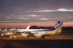 ピーチさんが、岡山空港で撮影したAIR DO 737-781の航空フォト(写真)