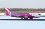 セブンさんが、新千歳空港で撮影したピーチ A320-214の航空フォト(写真)