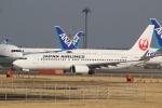 airdrugさんが、成田国際空港で撮影した日本航空 737-846の航空フォト(写真)