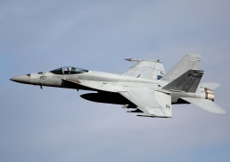 new_2106さんが、厚木飛行場で撮影したアメリカ海軍 F/A-18E Super Hornetの航空フォト(写真)