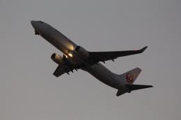 Koenig117さんが、関西国際空港で撮影した日本航空 737-846の航空フォト(写真)
