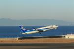 masakazuさんが、中部国際空港で撮影した全日空 737-881の航空フォト(写真)