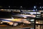 颯平さんが、羽田空港で撮影した全日空 777-381/ERの航空フォト(写真)