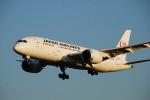 SHOさんが、成田国際空港で撮影した日本航空 787-846の航空フォト(写真)