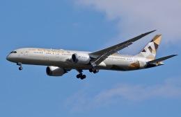 柏の子?さんが、成田国際空港で撮影したエティハド航空 787-9の航空フォト(写真)