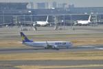 fukucyanさんが、羽田空港で撮影したスカイマーク 737-86Nの航空フォト(写真)