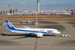 りんごさんが、羽田空港で撮影した全日空 787-881の航空フォト(写真)