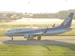 おっつんさんが、新石垣空港で撮影した全日空 737-781の航空フォト(写真)