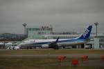 よしポンさんが、稚内空港で撮影した全日空 737-881の航空フォト(写真)