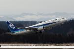 Polarisさんが、大館能代空港で撮影した全日空 737-881の航空フォト(写真)