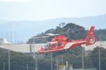 ja0hleさんが、名古屋飛行場で撮影した名古屋市消防航空隊 AS365N3 Dauphin 2の航空フォト(写真)