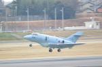ja0hleさんが、名古屋飛行場で撮影した航空自衛隊 U-125A(Hawker 800)の航空フォト(写真)