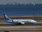 poppoya-makochanさんが、羽田空港で撮影した全日空 737-881の航空フォト(写真)
