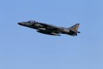 DBACKさんが、岩国空港で撮影したアメリカ海兵隊 McDonnell Douglas AV-8B Harrier IIの航空フォト(写真)