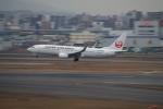 門ミフさんが、福岡空港で撮影した日本航空 737-846の航空フォト(写真)