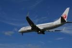 よしポンさんが、帯広空港で撮影したJALエクスプレス 737-846の航空フォト(写真)