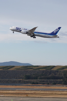 pringlesさんが、長崎空港で撮影した全日空 787-881の航空フォト(写真)