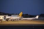 ピーチさんが、岡山空港で撮影したアメリカ企業所有の航空フォト(写真)