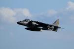 Kanarinaさんが、岩国空港で撮影したアメリカ海兵隊 McDonnell Douglas AV-8B Harrier IIの航空フォト(写真)