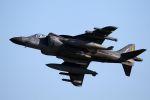 kazuchiyanさんが、岩国空港で撮影したアメリカ海兵隊 AV-8B Harrier II+の航空フォト(写真)