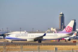 パンダさんが、成田国際空港で撮影したチャイナエアライン 737-8ALの航空フォト(写真)