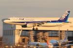 多楽さんが、成田国際空港で撮影した全日空 A320-211の航空フォト(写真)