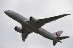はやたいさんが、関西国際空港で撮影した日本航空 787-846の航空フォト(写真)